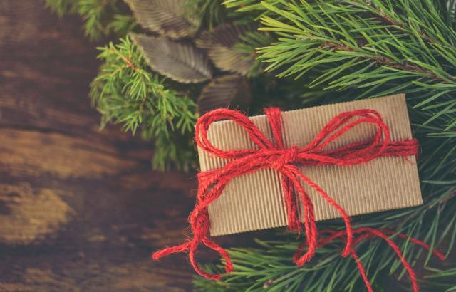 sustainable holiday gift