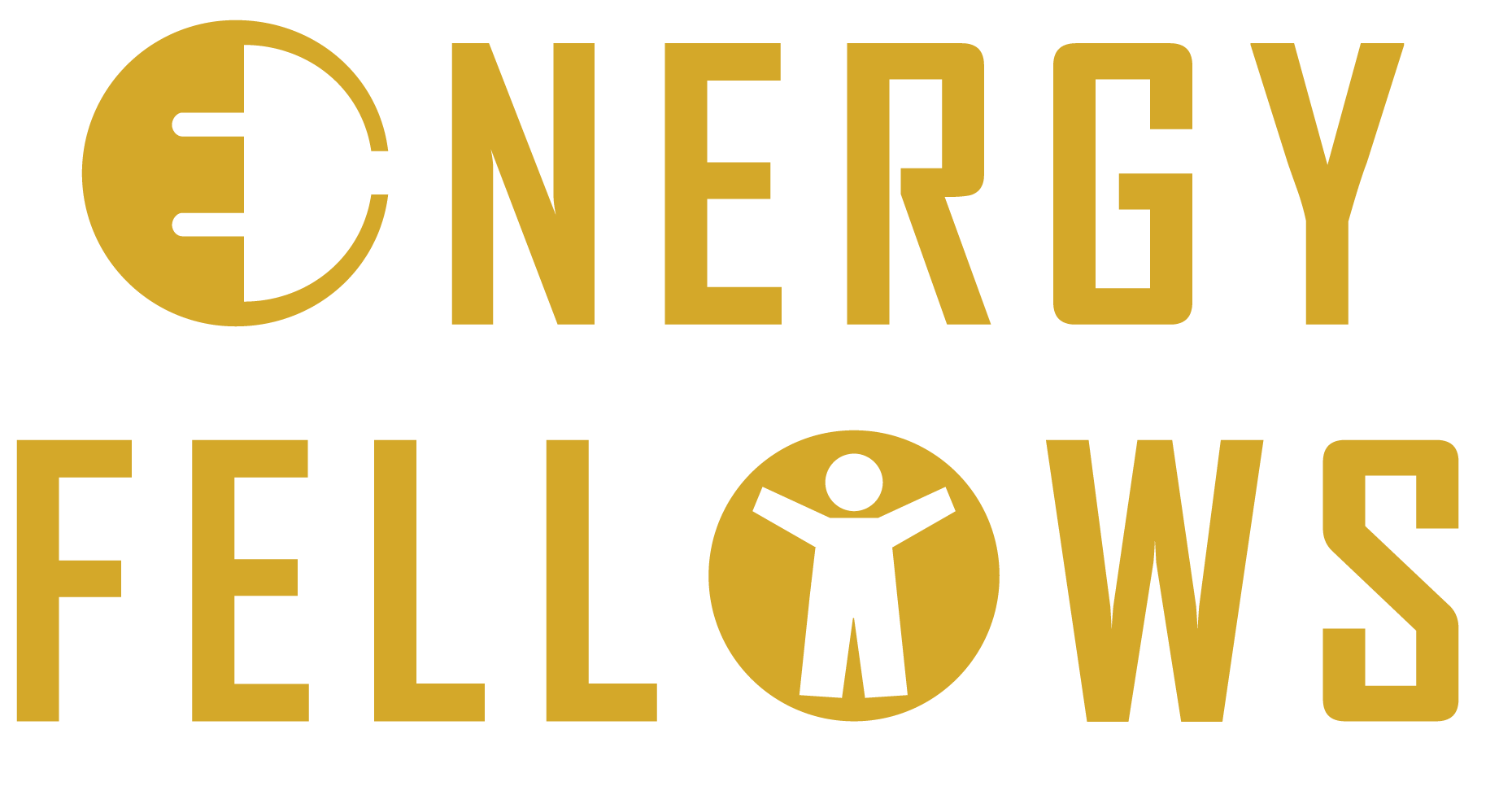 energy fellows logo.png