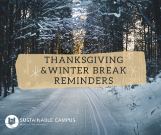 "Snowy road with text overlay that reads ""Thanksgiving and Winter Break reminders"""